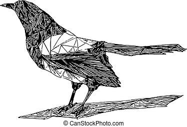 aislado, pájaro, blanco, figura, urraca, plano de fondo