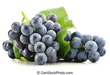 aislado, uvas, fresco, rojo blanco, ramo