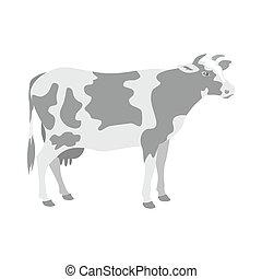 aislado, vista, plano de fondo, posición, profile., vaca, ...
