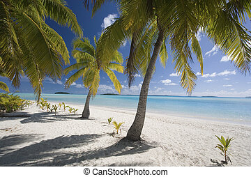 Aitutaki Lagoon in the Cook Islands in the South Pacific.