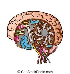 aj, wektor, kolor, cyberntic, prospekt, bok, mózg