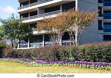 ajardinado, propriedade, ao redor, edifício escritório