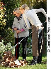 ajudando, mulher, jardinagem, jovem, idoso