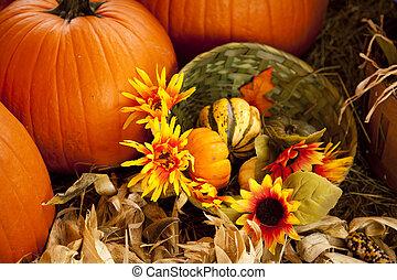 ajuste, acción de gracias, otoño