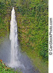 Akaka Falls, Big Island, Hawaii - The Akaka Falls on Big...