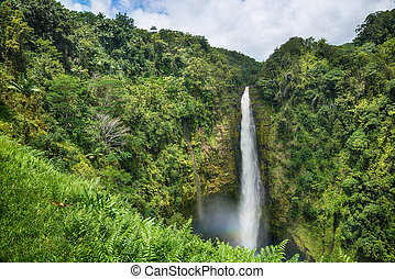 Akaka Falls State Park Big Island Hawaii