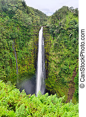 Akaka Falls waterfall in Hawaii