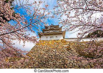 Akashi, Hyogo, Japan in Spring - Akashi, Hyogo, Japan castle...