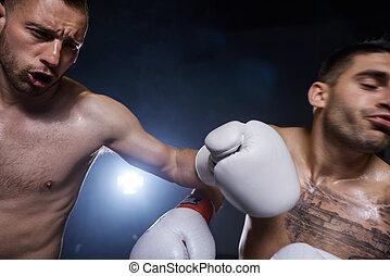 akció, becsuk, hím, feláll, bokszoló