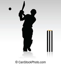 akció, játékosok, krikett