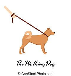 Akita Inu with a leash - dog asian breed on white background. Vector illustration