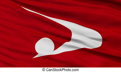 Akita Prefecture Close Up Flag