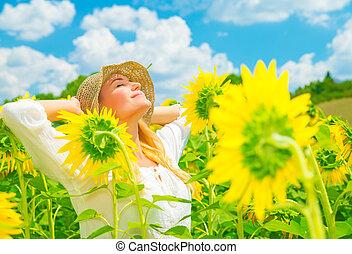 akker, het genieten van, zonnebloem