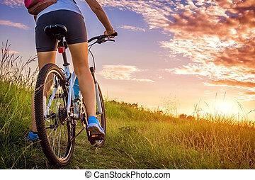 akker, vrouw, fiets, jonge, paardrijden