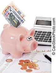 aktie, priser, hos, piggy bank, og, penge