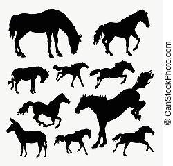 aktiv, pferd, silhouette, tier