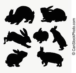 aktiv, silhouette, kanninchen, tier