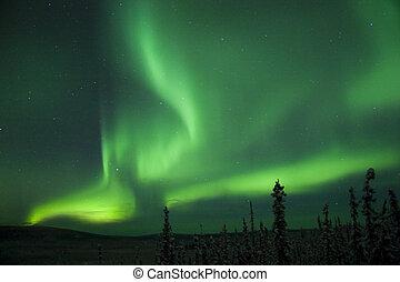 aktive, borealis, polarlicht, bogen, spaltung