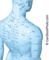 akupunktur, begriff
