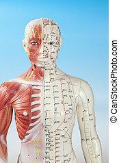 akupunktur, schnuller