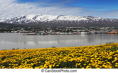Akureyri city - Iceland - akureyri city