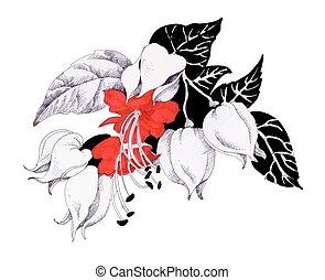 akwarela, kwiaty, ilustracja, rozkwiecony
