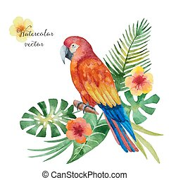 akwarela, liście, kwiaty, papuga