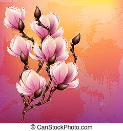 akwarela, magnolia, gałąź, ilustracja