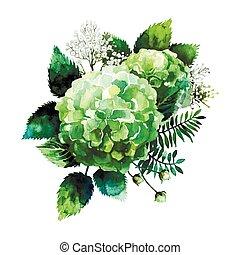 akwarela, winieta, hortensja, zielony