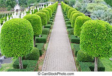 al aire libre, jardín, paisaje