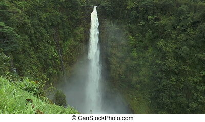 Alaka Falls Big Island Hawaii