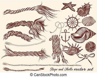 alapismeretek, látszat, szüret, gyűjtés, kéz, odaköt, tenger, húzott, style.eps