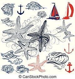 alapismeretek, starfishes.eps, szünidő, gyűjtés, óceán, téma, vektor, tenger, tengeri