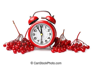 Alarm clock and red berries of viburnum on white background