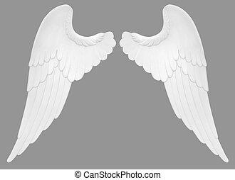 alas, ángel