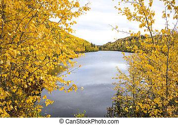 Alaska Autumn View