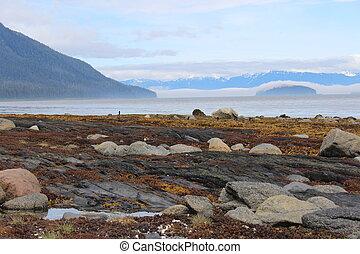 Alaska Island Beach Landscape - Landscape on Mitkof Island...