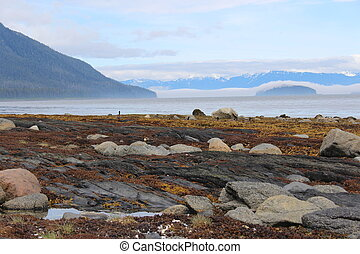 Alaska Island Beach Landscape
