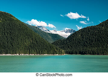Kenai River in Alaska flows past forests and mountains in the wilderness, idyllic clear landscape