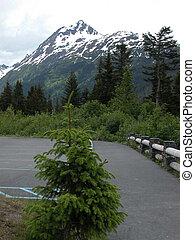 Alaska Mountain - Exit