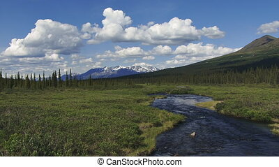 Alaska Vista Creek Tundra Mt Scenic - Classic summer in...