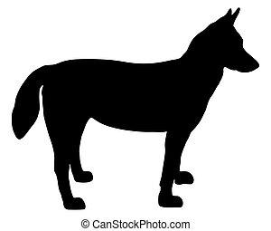 Alaskan Husky silhouette