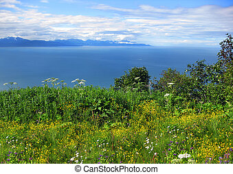 Alaskan Landscape and Cook Inlet