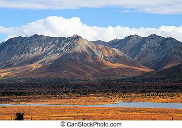 Pretty scenery of an isolated stream in Alaskan wilderness