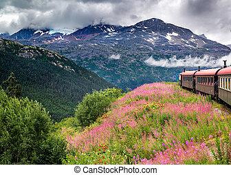 Alaskan Train Cruising Near Skagway, AK