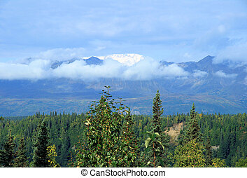 Alaskan Vista