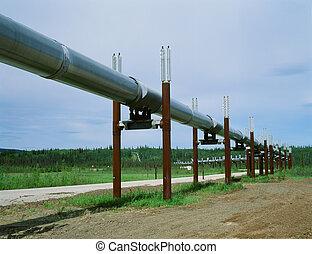 alaszka, csővezeték, trans-, olaj