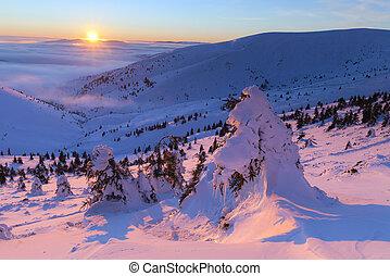alba, montagne, inverno, colorito
