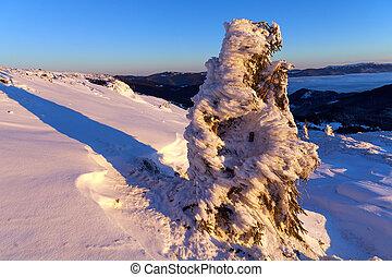 alba, montagne., inverno, colorito
