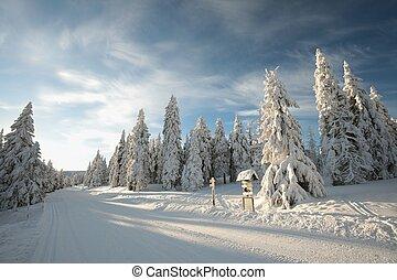 alba, paesaggio inverno